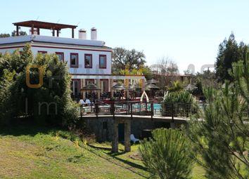 Thumbnail Land for sale in Vale Das Éguas, 7555 Santiago Do Cacém, Portugal