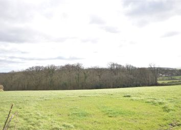 Thumbnail Land for sale in Peters Marland, Torrington