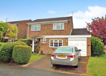 Thumbnail 4 bed semi-detached house to rent in Arethusa Way, Bisley, Woking
