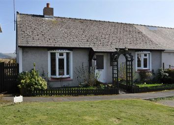 Thumbnail 2 bed semi-detached bungalow for sale in Cwrt Y Wern, Pontrhydfendigaid, Ystrad Meurig