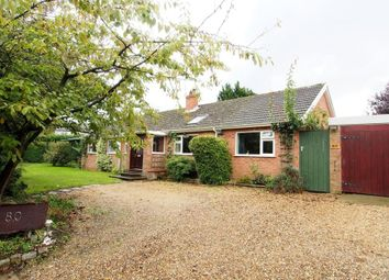 Thumbnail 5 bedroom detached bungalow for sale in Low Street, Crownthorpe, Wicklewood, Wymondham