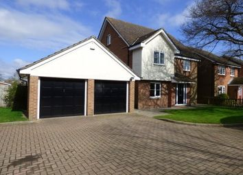 Thumbnail 5 bed detached house to rent in Needham Close, Billericay