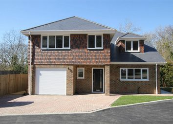 Thumbnail 4 bed detached house for sale in Shining Cliff, Hastings, East Sussex