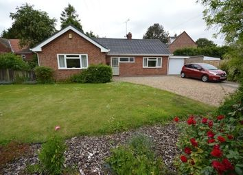 Thumbnail 3 bed detached bungalow to rent in White Horse Lane, Briggate, North Walsham
