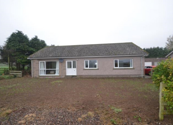 Thumbnail 3 bed detached bungalow to rent in 8 Findowrie Cottages, Brechin