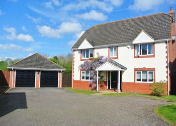 Thumbnail 5 bedroom detached house for sale in Taylor Drive, Bramley, Tadley