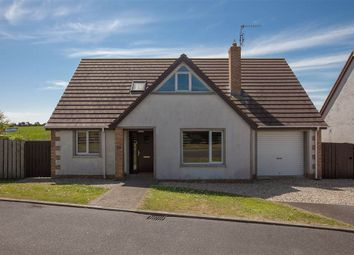 Thumbnail 4 bed detached house for sale in 21, Long Island Drive, Newtownards