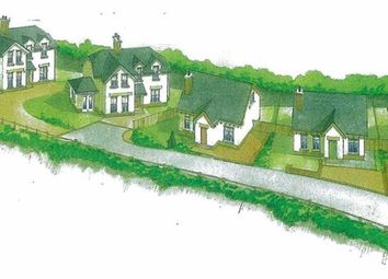 Thumbnail Land for sale in Moss Road, Ballynahinch