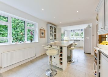 Thumbnail 4 bedroom detached house to rent in Fountain Road, Selborne, Alton