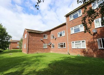 Thumbnail 2 bed flat to rent in Burnside Court, Black Path, Polegate, East Sussex