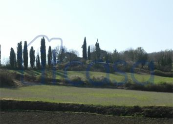 Thumbnail 4 bed farmhouse for sale in Casale Belvedere, Anghiari, Arezzo, Tuscany, Italy