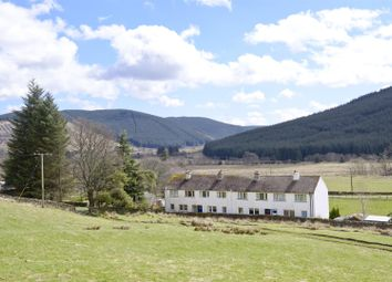 Thumbnail 3 bed cottage for sale in Nummer Tree, Ettrick, Selkirk