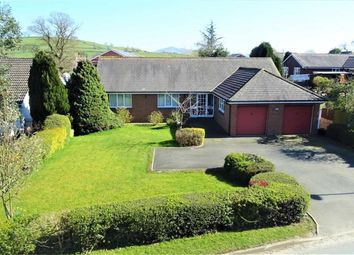 Thumbnail 4 bedroom bungalow for sale in 7, Holly View, Forden, Welshpool, Powys