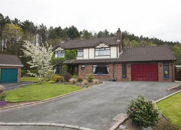 Thumbnail 4 bedroom detached house for sale in 6, Brooklands Drive, Newtownards