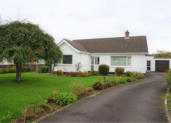 Thumbnail 3 bed detached bungalow for sale in Kent Avenue, Larne