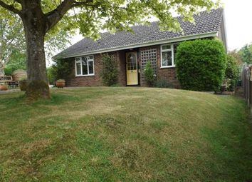 Thumbnail 3 bedroom bungalow for sale in Honingham, Norwich, Norfolk