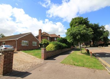 Thumbnail 2 bed detached bungalow to rent in Jessopp Road, Norwich