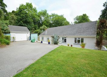 Thumbnail 3 bed detached bungalow for sale in Budock Water, Falmouth, Cornwall
