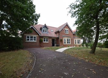 Thumbnail 5 bed detached house to rent in Tudor Court, Draycott, Derby