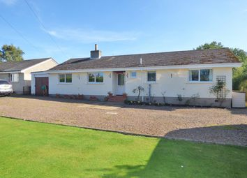 Thumbnail 4 bed bungalow for sale in The Green, Swinton, Duns, Berwickshire