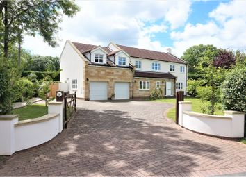 Thumbnail 5 bedroom detached house for sale in The Holme, Great Broughton
