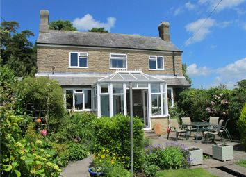 Thumbnail 3 bed detached house for sale in Seaborough, Beaminster, Dorset