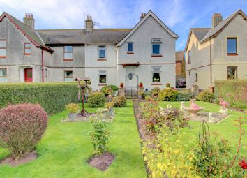 Thumbnail 3 bedroom semi-detached house for sale in North Villas, Embleton, Alnwick