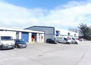 Thumbnail Light industrial to let in Unit 2C, Heathlands Industrial Estate, Liskeard