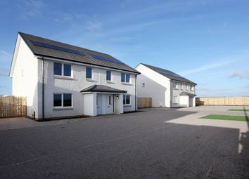 Thumbnail 4 bed semi-detached house for sale in Rosie View, Main Road, East Wemyss, Fife