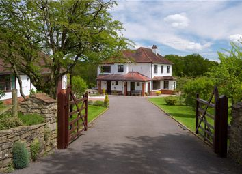 Thumbnail 5 bed detached house for sale in Membury Road, Axminster, Devon