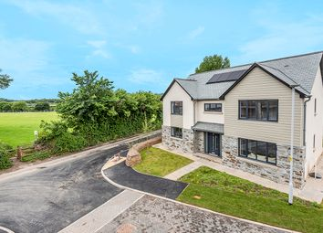 Thumbnail 5 bed detached house for sale in Wellspring Place, Elburton, Plymouth