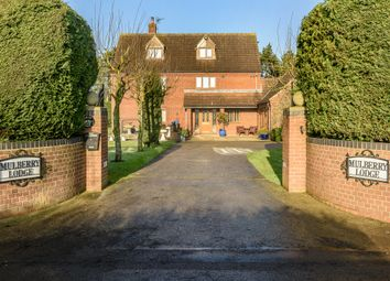 Thumbnail 6 bed detached house for sale in Herne Lane, Beeston, King's Lynn