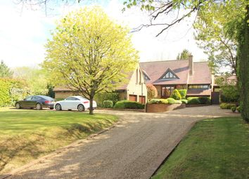 Thumbnail 4 bed detached house for sale in Petersfield Road, Ropley, Alresford