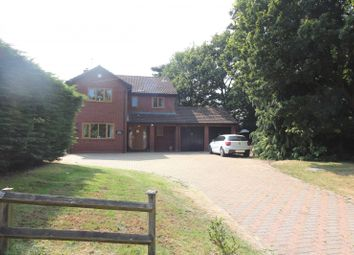 Thumbnail 4 bed detached house for sale in Priory Road, Saint Olaves