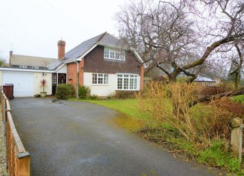 Thumbnail 3 bed detached house to rent in West Meade, Milland, Liphook