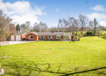 Thumbnail 3 bed detached bungalow for sale in Hafod Moor, Gwernaffield, Mold