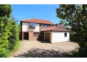 Thumbnail 4 bedroom detached house to rent in Harston Road, Cambridge