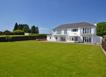Thumbnail 6 bed detached house for sale in Incredible Luxury Property, Sluvad Road, New Inn