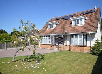 Thumbnail 4 bedroom detached house for sale in Chestnut Avenue, Barton On Sea, New Milton