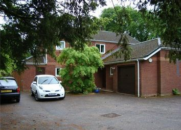 Thumbnail 4 bed detached house to rent in Bendarroch Road, West Hill, Ottery St. Mary