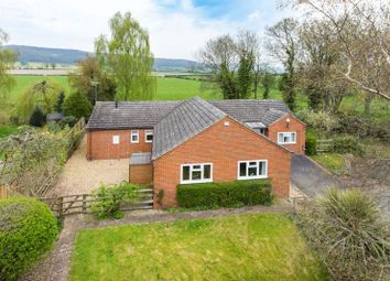 Thumbnail 4 bed bungalow for sale in Completely Refurbished Spacious Bungalow In Wellington, Hereford