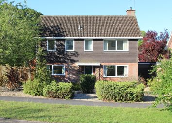 Thumbnail 4 bed detached house for sale in Down Gate, Alresford