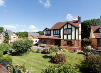 Thumbnail 5 bedroom detached house for sale in Haul Fryn, Birchgrove