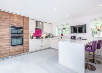 Thumbnail 4 bedroom detached house for sale in Conquest Drive, Hailsham