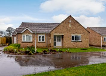 Thumbnail 3 bed detached bungalow for sale in Manor Lane, Dinnington, Sheffield, South Yorkshire