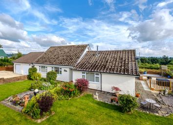Thumbnail 4 bed detached bungalow for sale in Llanyre, Llandrindod Wells