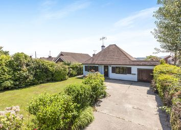 Thumbnail 2 bed bungalow to rent in Church Lane, Westfield, Hastings
