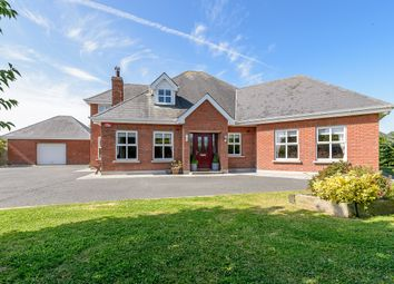 Thumbnail 4 bed detached house for sale in 9 Seaview, Termonfeckin, Louth