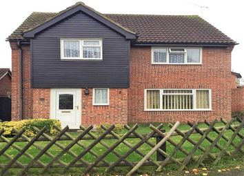 Thumbnail 4 bed detached house to rent in Tiberius Close, Haverhill, Suffolk