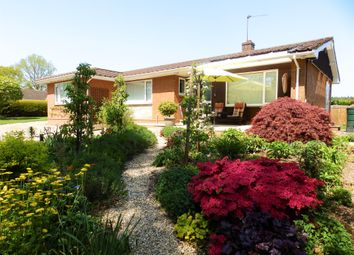 Thumbnail 4 bed detached bungalow for sale in Pinefields Close, West Hill, Ottery St. Mary